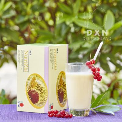 DXN Nutrizhi Mischgetränk auf Sojabasis