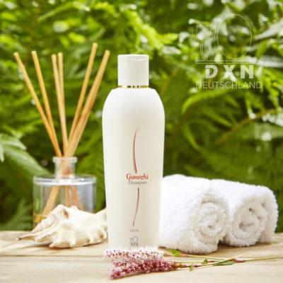DXN Ganozhi Shampoo