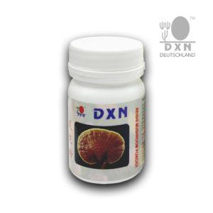 DXN Reishi Mushroom Pulver
