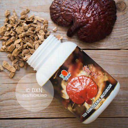 DXN Ganoderma Mushroom Packung